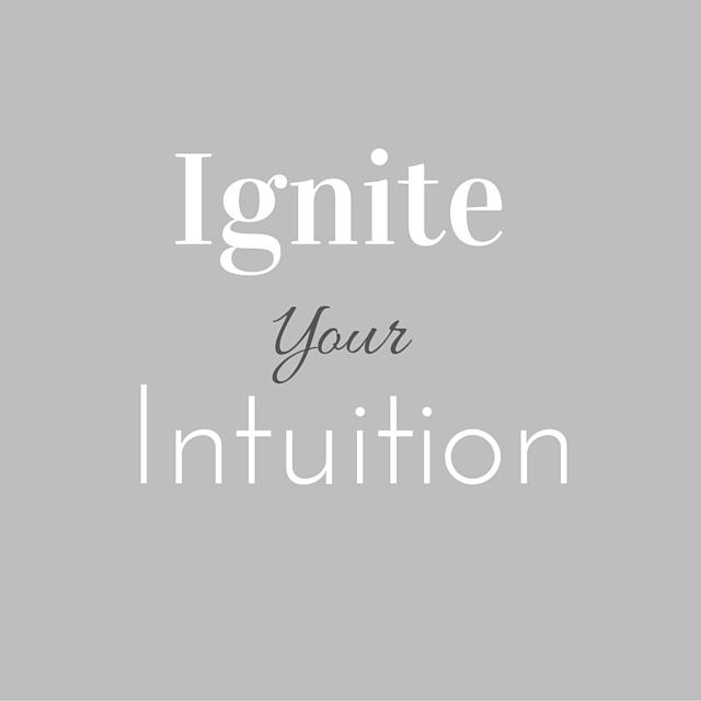portfolio Ignite Grey (2)