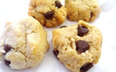 Gluten Free Paleo Cookies